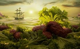 Lettuce-Seascape220