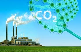 co2novelfunctio280